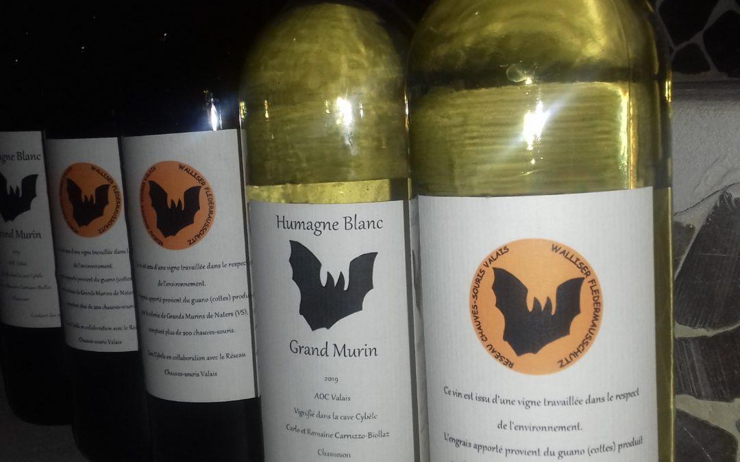 Du guano à la vigne … santé!